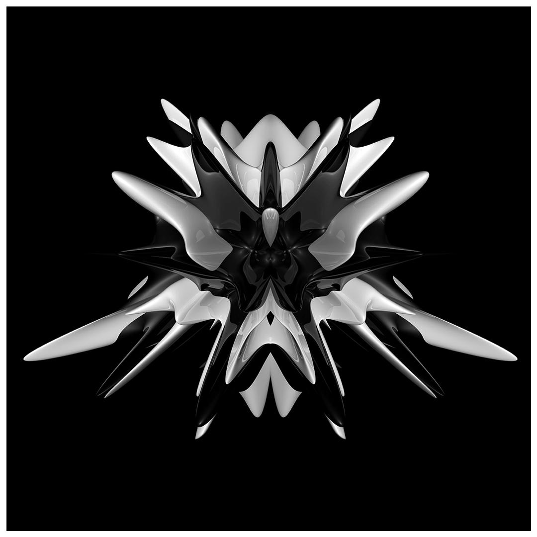 _02symbiont03_Nepenthes hamata